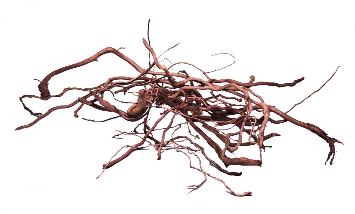 SPIDER TWIGS 100 g